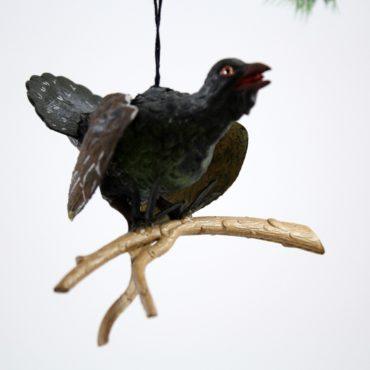 Turkey Vulture on Branch